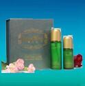宝狮龙产品-宝狮龙商家-宝狮龙相册
